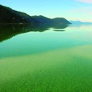 La cyanobactérie Aphanizomenon Flos Aquae (AFA / ABV), qui pousse dans le lac Klamath est un trésor de la nature dont il serait dommage de ne pas profiter. L'AlphaOne du groupe SynerJ-Health de Jacques Prunier sera alors votre meilleur atout santé.