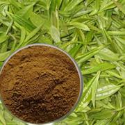 Le thé vert, aux propriétés anti-oxydantes puissantes, vous aidera à retrouver votre bien-être et votre santé avec l'aide du SynerBoost du groupe SynerJ-Health de Jacques Prunier.