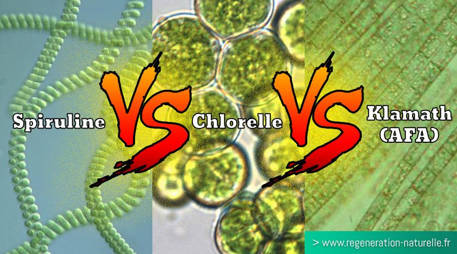 Quelle algue choisir entre la Spiruline, la Chlorelle et la Klamath (AlphaOne - SynerJ-Health) ? Quelles sont leurs différentes propriétés ?