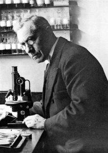 Beijerinck découvre la Chlorella en 1890 mais la trouve indigeste. L'AFA du lac Klamath (AlphaOne SynerJ-Health, popularisée par Jacques Prunier) en revanche est utilisée au naturel depuis des millénaires.